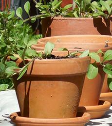 hb-poteries-jardin