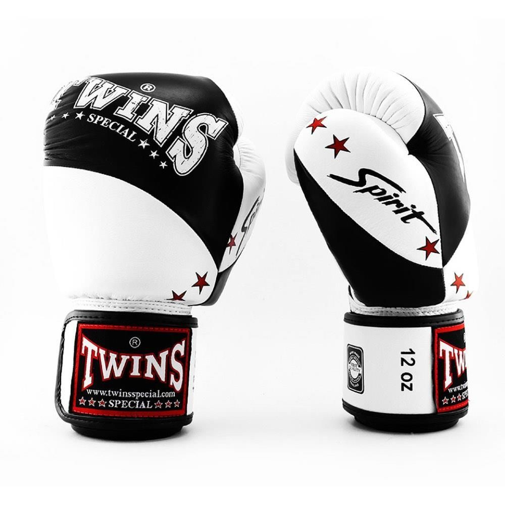 Gants de boxe Twins Core