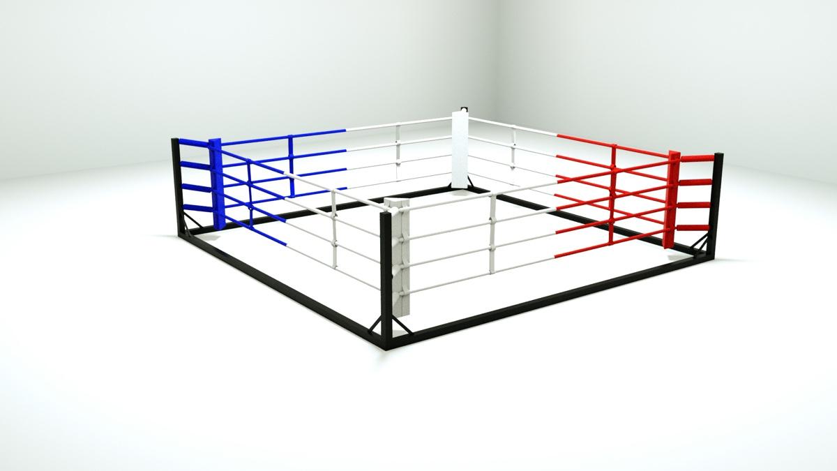 ring-boxe-demontabe