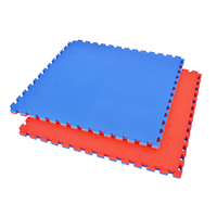 Tatamis puzzle 2.5 cm motif T Rouge et Bleu