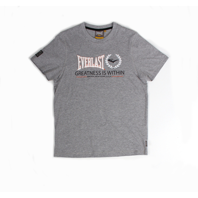 t-shirt-everlast-gris