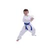 kimono-judo-toile-dojo-master-dmkj909