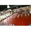 tatami_de_taekwondo
