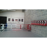ring_de_boxe_mural