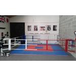 ring_de_boxe_avec_fixation_mural