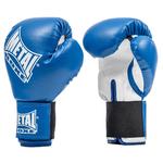 gants-de-boxe-metal-boxe-pb480-bleu