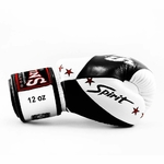 gants-de-boxe-thai-twins-bgvl10