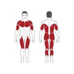 cage-musculation-nopr-steelflex-3