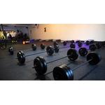 small-group-training_BASIC PALAU