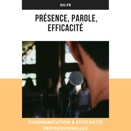 Formation Communication & Efficacité pro-3009