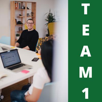 TEAM1 - Mieux se connaître pour bien travailler en équipe