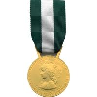 Médaille de vermeil 30 ans d'honneur régionale départementale et communale