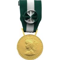 Médaille d'or 35 ans d'honneur régionale départementale et communale