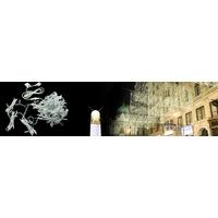 Rideau éco-lumière blanc chaud fixe 2mx3m
