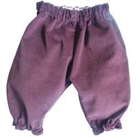 Pantalon Dina velours de coton Prune