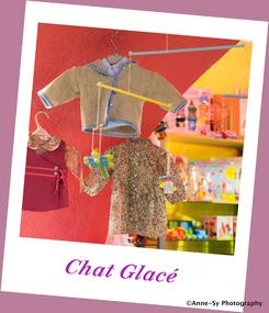 17-Chat Glacé 1-032