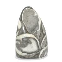 Jaspe fossile en bloc forme libre à poser entre 300 et 400 gr