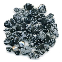 Obsidienne Neige en Lot de 50g