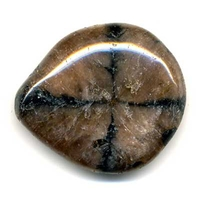 Pierre plate en Andalousite ( Chiastolite )
