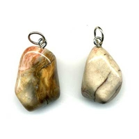 Pendentif Bois fossile Extra