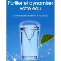 Energétiseur d'eau en Chrysoprase et Cristal de Roche