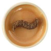 Encens rares - Le Feu sacré de la Salamandre- Prières - 25 gr