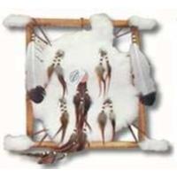 Le Bouclier Amérindien