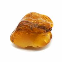 Pièce unique - Ambre pierre roulée de 10g