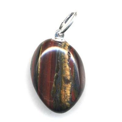 7787-pendentif-fer-de-tigre