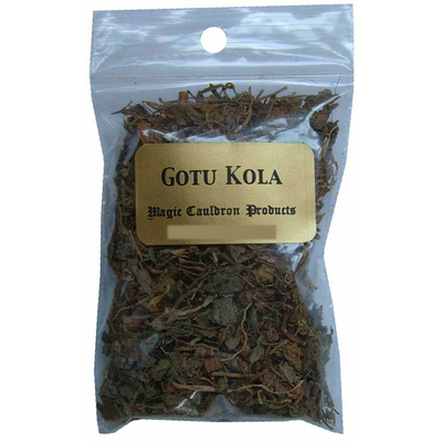 gotu-kola-plante-magique