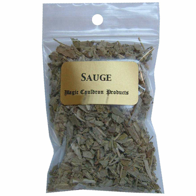 sauge-officinale-plante-herbe