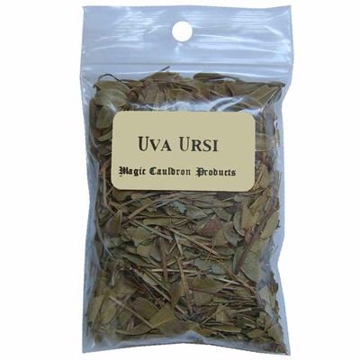 uva-ursi-plante-herbe
