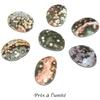 7096-mini-pierre-plate-en-jaspe-orbiculaire