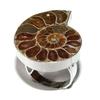 7047-bague-en-ammonite-fossile