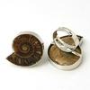 7050-bague-en-ammonite-fossile