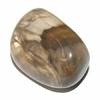 5263-bois-fossile-de-30-a-35-mm
