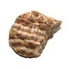 3056-aragonite-brute-40-a-50-mm