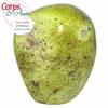 Pièce-unique-Opal-Kiwi-poli-à-poser-694g