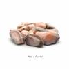 Agate-botswana-rose-de-15-à-20mm-4