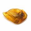 Ambre-pierre-roulée-modèle-3.1