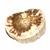 Tranche-polie-Bois-fossile-bloc-entre-50-et-100g-1
