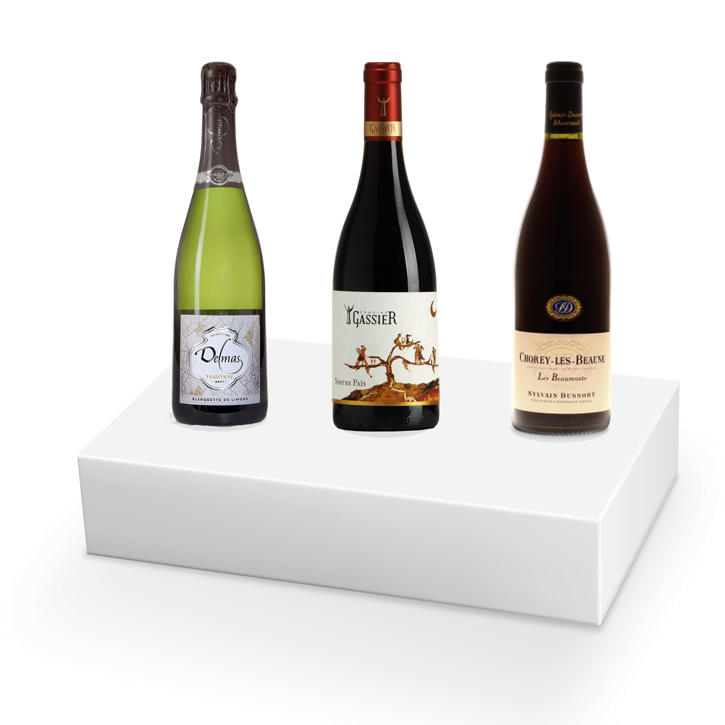 Coffret vins pour fondue bourguignonne - 3 bouteilles - N°1