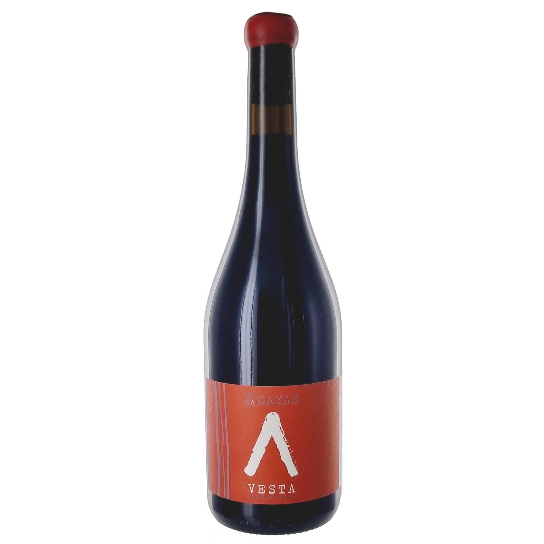 Vin de France - Vesta - Domaine des Gayas - 2019
