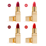 rouge-lips-mat-masters-colors