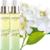 eau-parfumee-sothys-citron-petitgrain