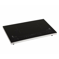 Naelia CGF-06101-NAE 2016 Double Plaque Induction Tactile