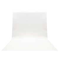 studio Backdrop 295 x 595 cm Blanc