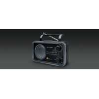 Muse M-06 DS Portable 2-Band Analogique Radio Portable