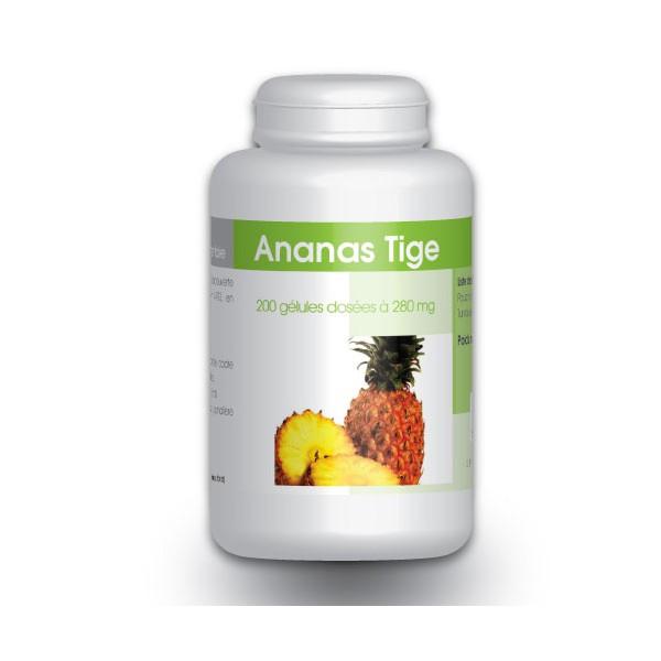 Ananas (Poudre de tige riche en Bromelaine) 200 gelules ...