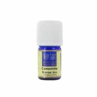 Huile Essentielle - Camomille du Maroc (Ormenix mixta) Bio - 5 ml